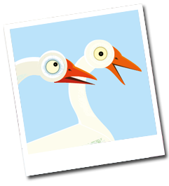 freddy-buttons-gander-goose